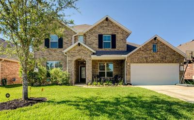 Katy Single Family Home For Sale: 23611 Monte Lago Lane