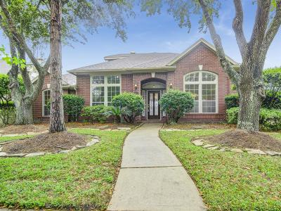Houston Single Family Home For Sale: 4139 Pine Crest Trail