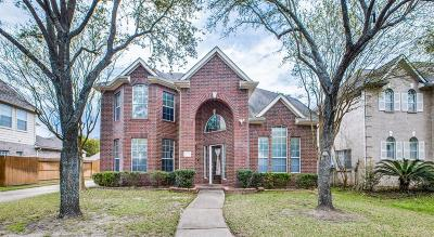 Houston Single Family Home For Sale: 17510 Shadow Lawn Way