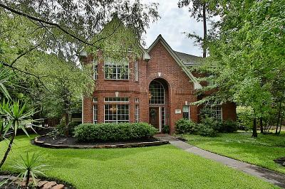 The Woodlands Single Family Home For Sale: 22 Shadowpoint Circle