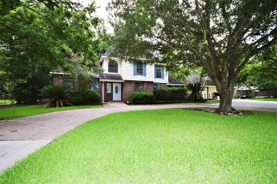Friendswood Single Family Home For Sale: 205 E Heritage Drive