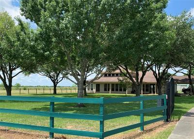 Galveston County, Harris County Single Family Home For Sale: 16273 Katy Hockley Road
