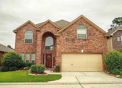 Friendswood Single Family Home For Sale: 3516 Cortona Lane
