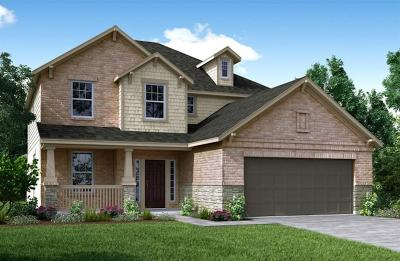 Rosenberg Single Family Home For Sale: 8907 Japonica Drive