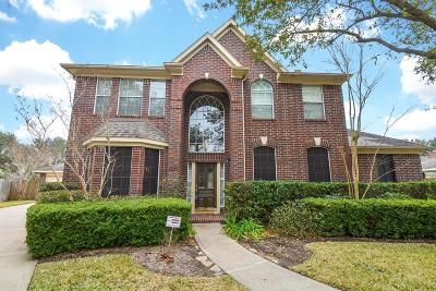 Sugar Land Single Family Home For Sale: 5322 Rebel Ridge Drive
