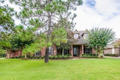 Pearland Single Family Home For Sale: 1610 Pine Crest Drive