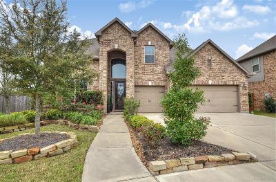 Katy Single Family Home For Sale: 3034 Seneca Falls Lane