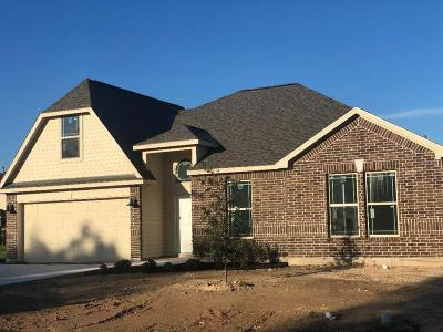 Dickinson Single Family Home For Sale: 8101 Rice Road