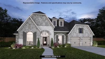New Caney Single Family Home For Sale: 23542 Vernazza Drive