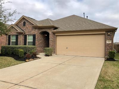 Harris County Single Family Home For Sale: 6818 Hunters Way Lane