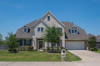 Friendswood Single Family Home For Sale: 2301 Lakeway Drive