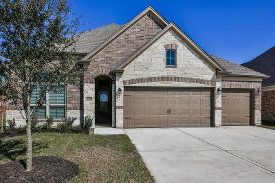 Rosenberg Single Family Home For Sale: 4907 Windy Poplar Trail