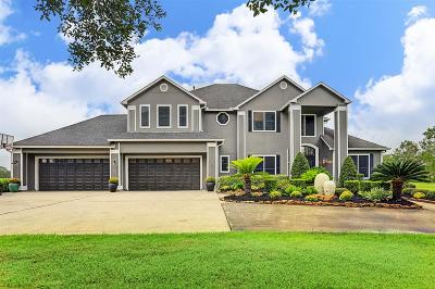 Manvel Single Family Home For Sale: 5930 Tammy Drive