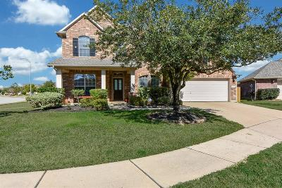 Tomball Single Family Home For Sale: 12310 Summercliff Court