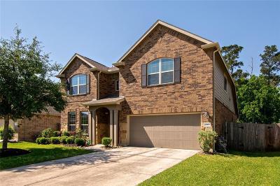 Houston Single Family Home For Sale: 13931 Albany Springs Lane