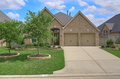 Montgomery Single Family Home For Sale: 169 Pinnacle Ridge Drive