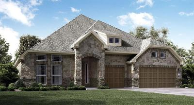 New Caney Single Family Home For Sale: 23551 Vernazza Drive