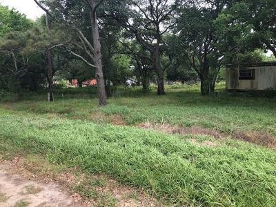 Brazoria Residential Lots & Land For Sale: 6309 Noveno Street