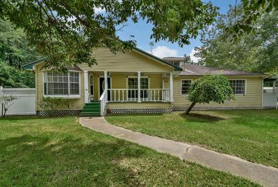 Single Family Home For Sale: 27198 Three Bar Street