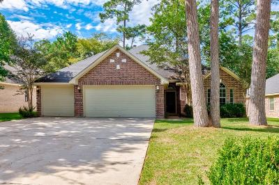 Montgomery Single Family Home For Sale: 3227 Fitzgerald Drive