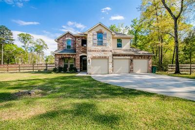 Conroe Single Family Home For Sale: 9139 Silver Back Trail