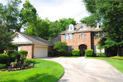 The Woodlands Single Family Home For Sale: 18 Swallow Tail Court