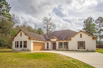 Porter Single Family Home For Sale: 19498 Nasas Drive
