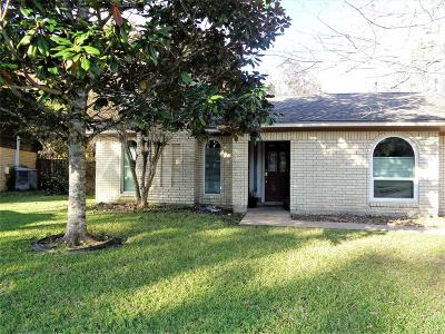 Angleton Single Family Home For Sale: 729 Newman Street