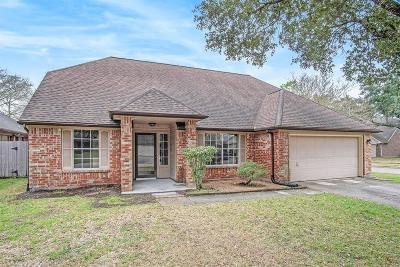 Pearland Single Family Home For Sale: 2506 Foxden Drive