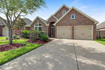 Pearland Single Family Home For Sale: 13618 Summer Cloud Lane