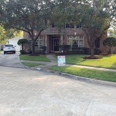 Sugar Land Single Family Home For Sale: 7018 E Glenwood Drive