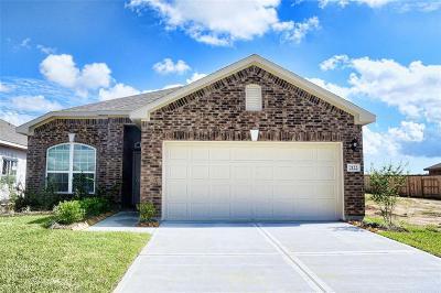 Texas City Single Family Home For Sale: 2122 Del Mar Drive E
