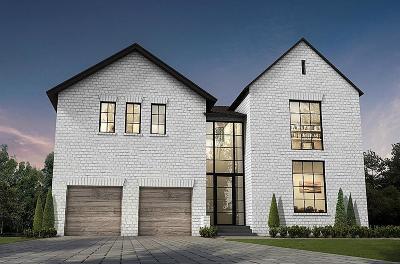Houston Single Family Home For Sale: 4714 Shetland Lane