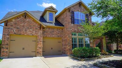 Katy Single Family Home For Sale: 10034 Terrance Springs Lane
