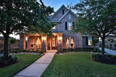 Tomball Single Family Home For Sale: 12638 Willow Breeze Drive