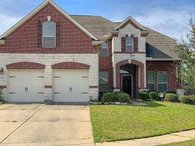 Spring, The Wodlands, Tomball, Cypress Rental For Rent: 19211 St Joanna Court