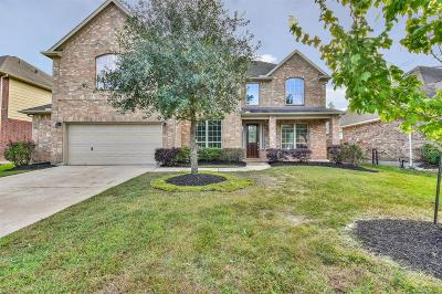 Houston Single Family Home For Sale: 2613 Sandy Lodge Court