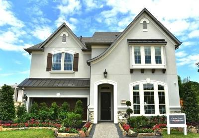 Houston Single Family Home For Sale: 1714 Cornelius Trace Loop