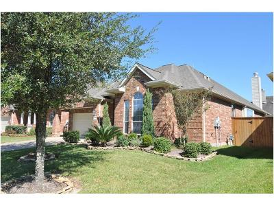 Katy Single Family Home For Sale: 5227 Valley Bluff Lane