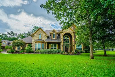 Magnolia Single Family Home For Sale: 28612 Champions Drive