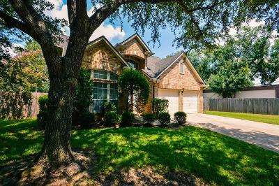 Sugar Land Single Family Home For Sale: 15302 Truslow Point Lane