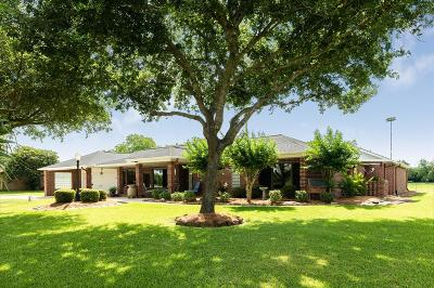 Alvin Single Family Home For Sale: 5924 County Road 166