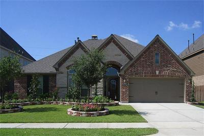 Katy Single Family Home For Sale: 27010 Drybank Creek Lane