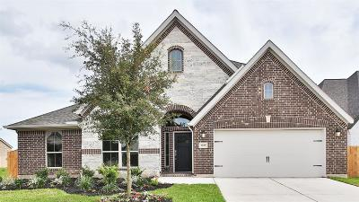 Pearland Single Family Home For Sale: 3106 Cactus Grove Lane