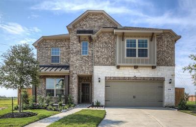 Katy Single Family Home For Sale: 23822 Hartford Springs Trail