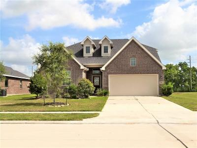 Fort Bend County Single Family Home For Sale: 8927 Birney Lane