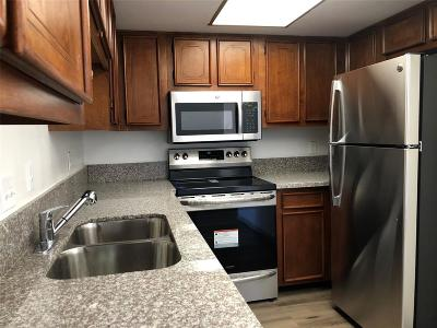 Houston TX Condo/Townhouse For Sale: $97,700