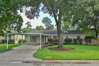 Houston Single Family Home For Sale: 1802 Chippendale Road