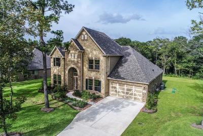 Conroe Single Family Home For Sale: 9536 Longmire Oaks Drive