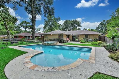 Houston Single Family Home For Sale: 2023 Chippendale Road